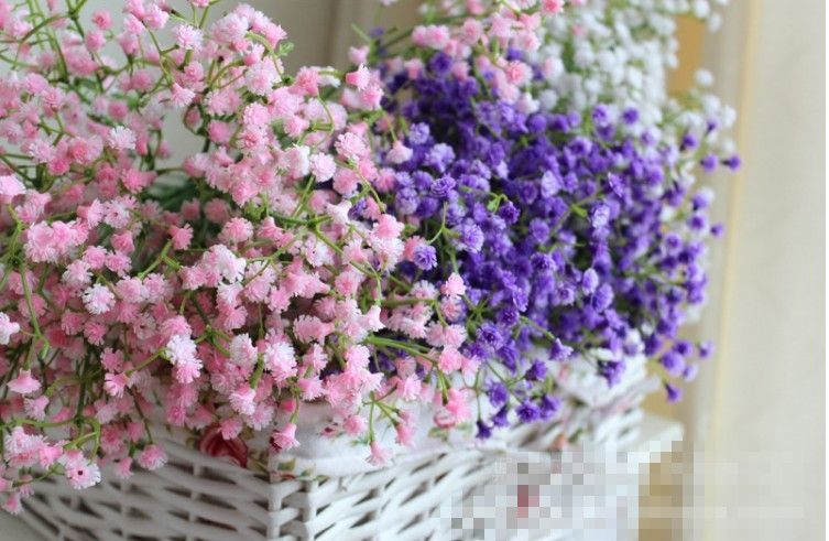 Pin By Suzannah Keller Esselman On Wedding Flowers Gypsophila Wedding Flower Bouquet Pictures Gypsophila Flower