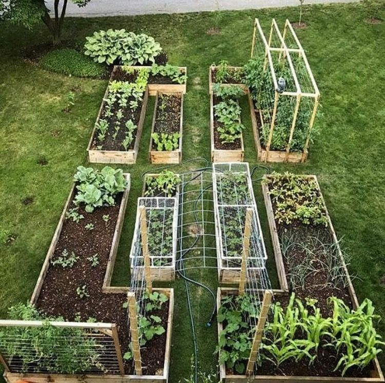 EXACTLY what I need but a bit bigger enclosed in a hoodie AND outside all within a fenced space to keep deer and bunnies out. -   22 enclosed garden beds ideas