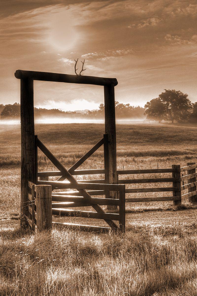 Photography Morning Light Fog Fence Sepia Landscape Sepia Color Sepia Photography Nature Photographs