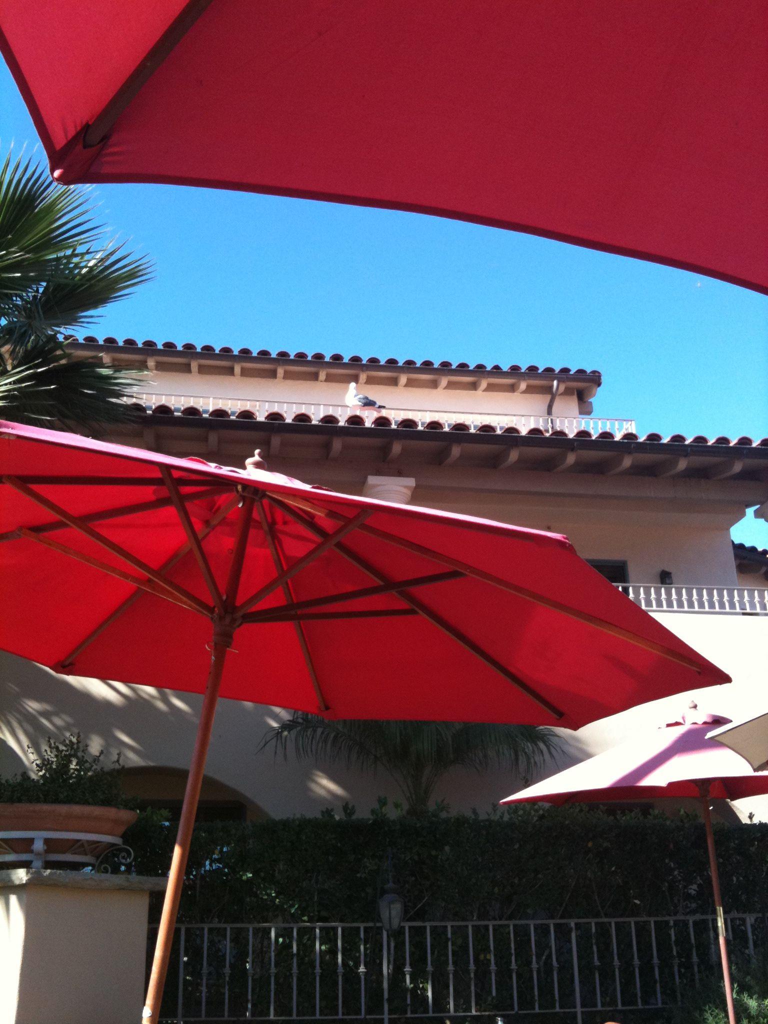 Dinner at Eladio's, Santa Barbara