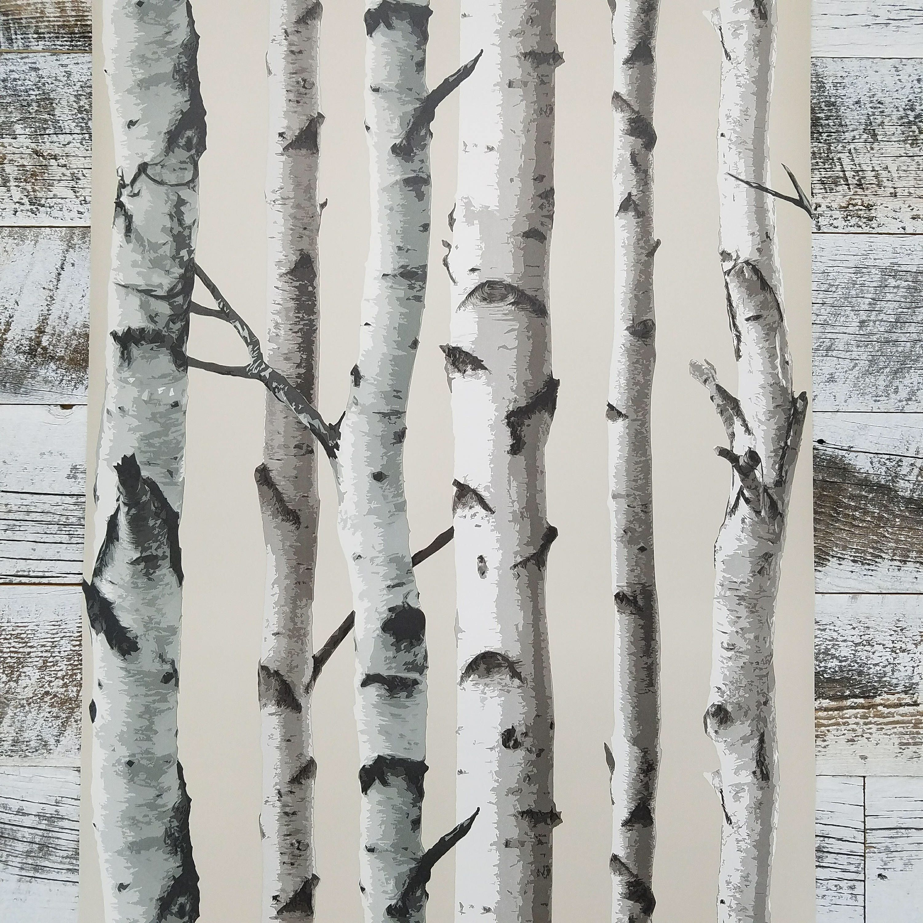 Birch Trees Peel and Stick Botanical Farmhouse Wallpaper
