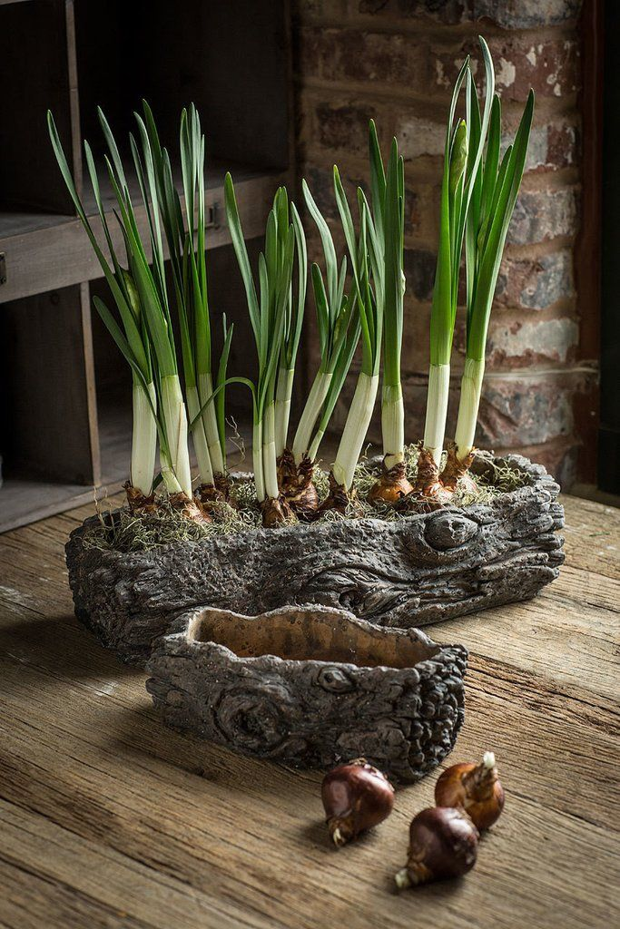 46 00 Cement Log Planter Set Of 2 Cement Log Planters These