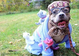 The cutest snoop doggy dog costumes page 10 of 10 costumes and dog dog costumes for halloween simple do it yourself costumes for your pets easy yet solutioingenieria Images