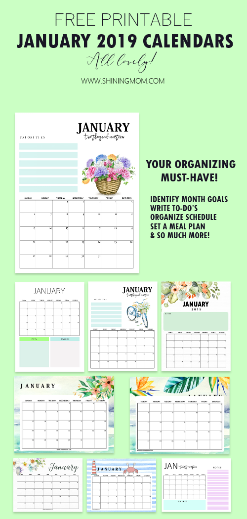 15 Free January 2019 Printable Calendar Planners Fresh Designs