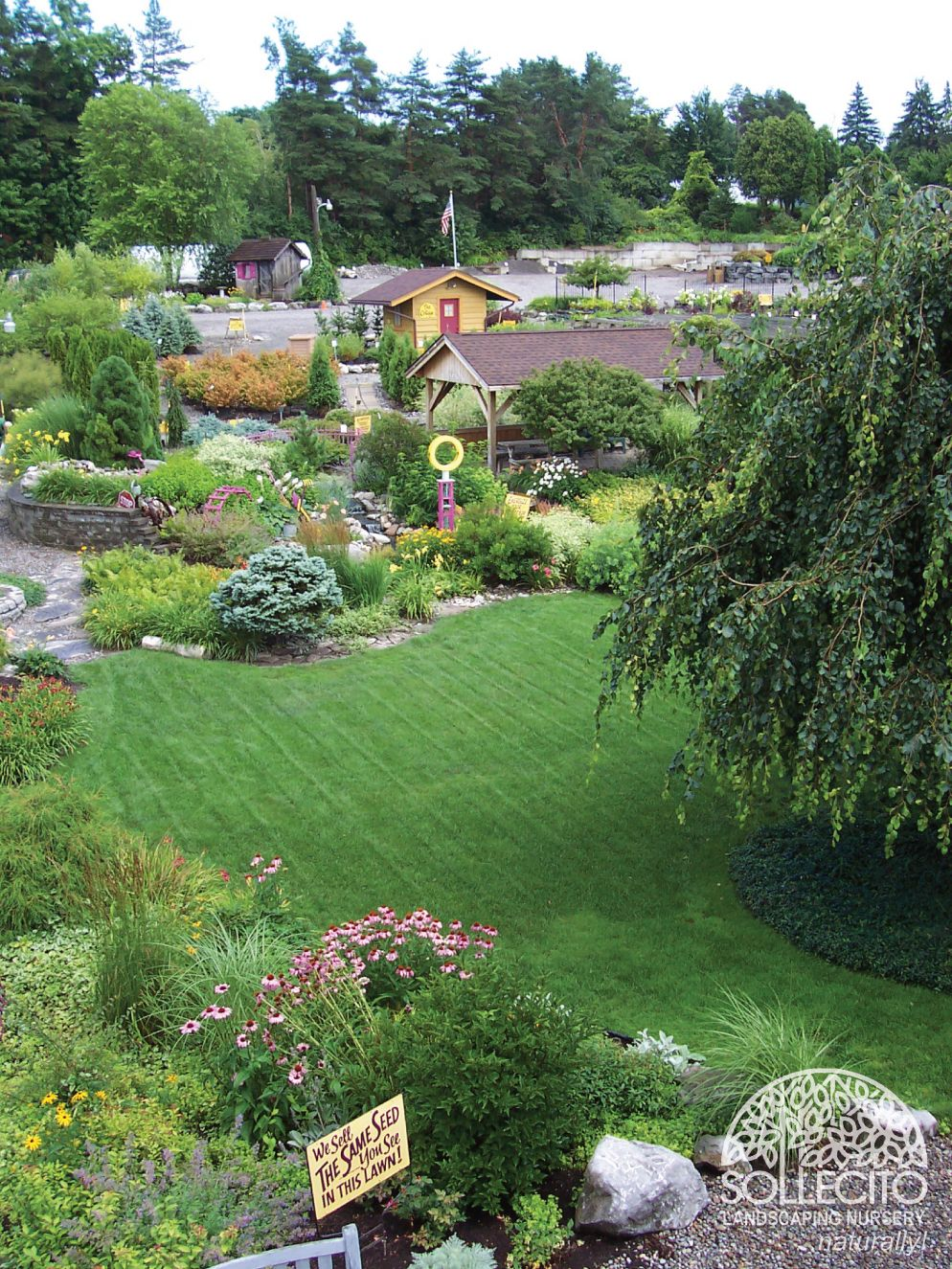 www.Sollecito.com - Landscaping Ideas for your backyard ...