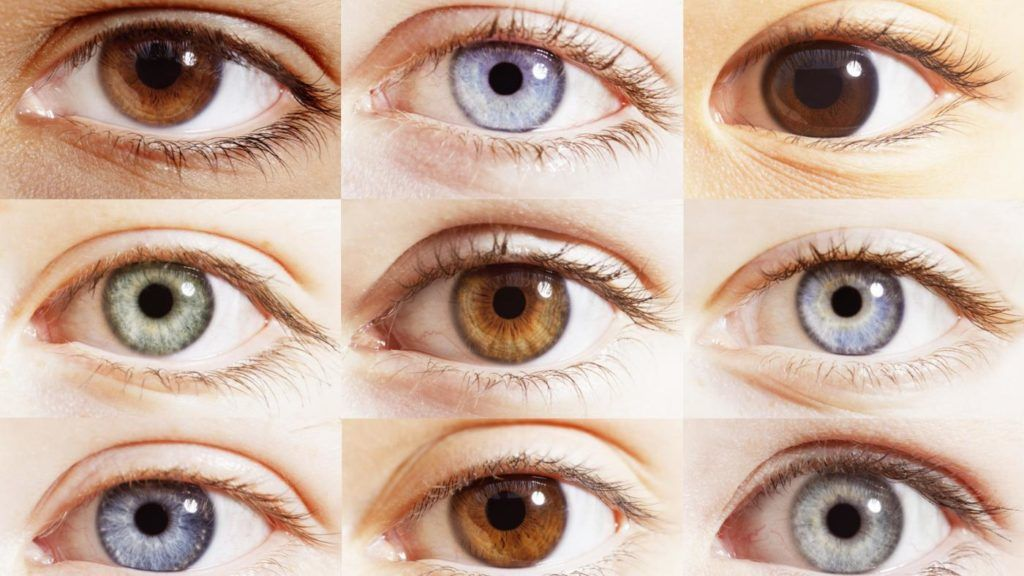 Eye Color Chart Content Eyes Eye Color Eye Color Chart