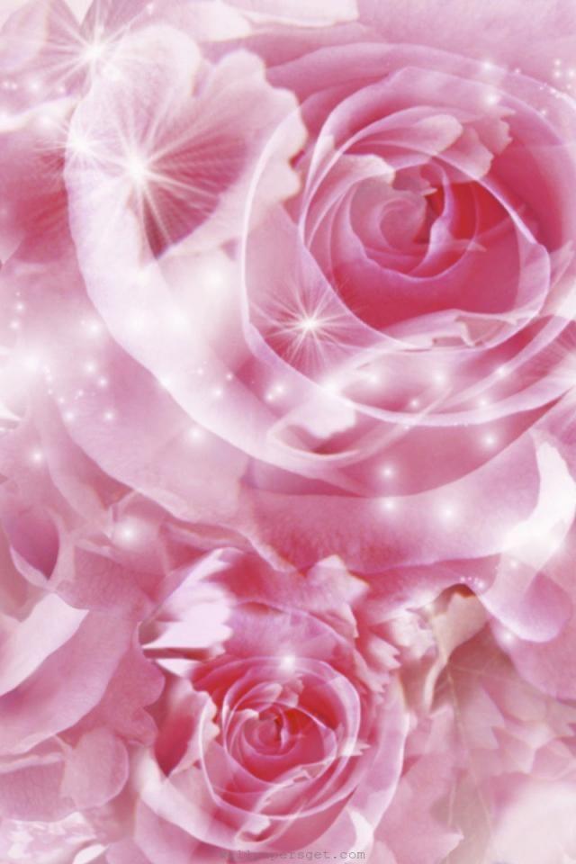 ピンクのバラのキラキラiphone壁紙 美しい花 バラの壁紙