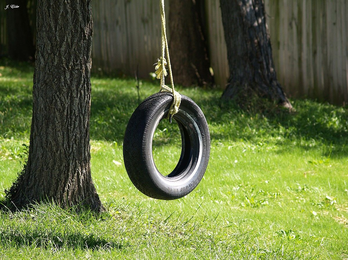 The brown 39 s had a great old tire swing hanging from their for Tyre swing ideas