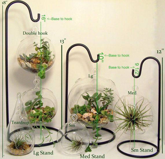 Large Hanging Glass Terrarium Stand Or By Flatherscreations Mini