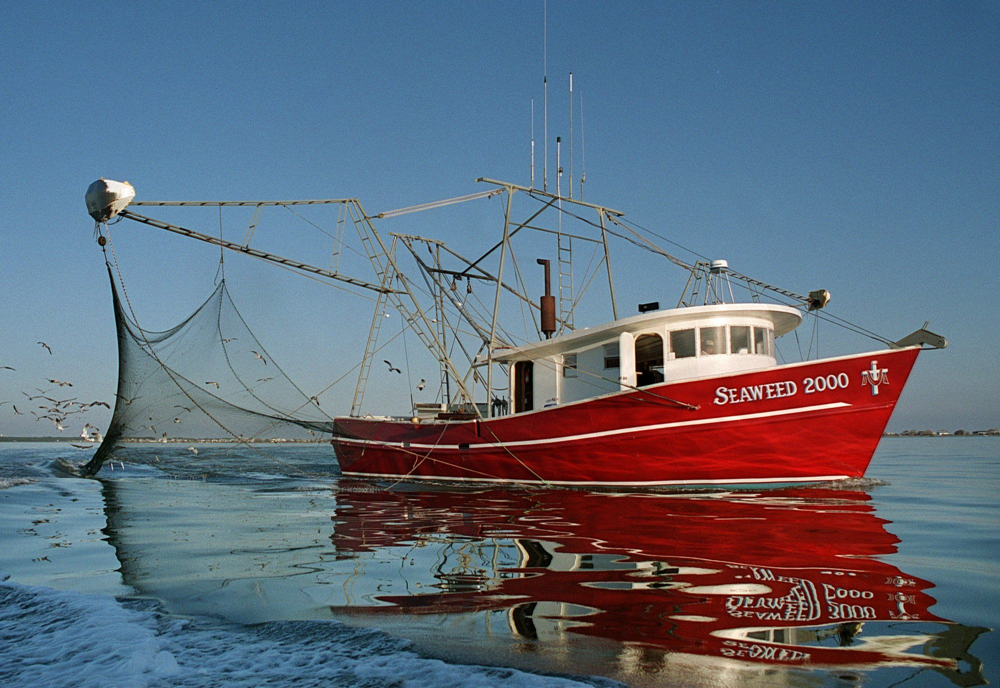 Mississippi flooding to have impact on gulf seafood for Deep sea fishing mobile al