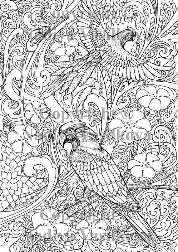 Printable Coloring Page Jpg Adult Colouring Page