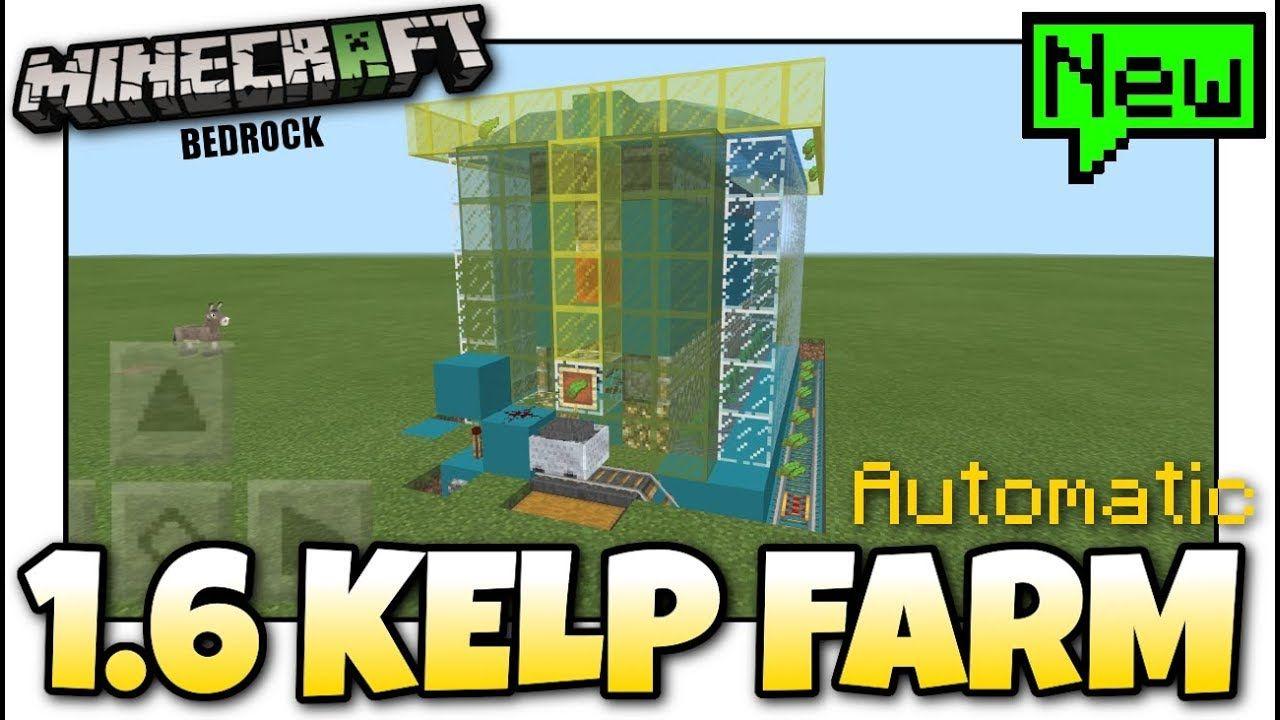 Minecraft BEST ( 1 6 ) AUTOMATIC KELP FARM EVER Tutorial