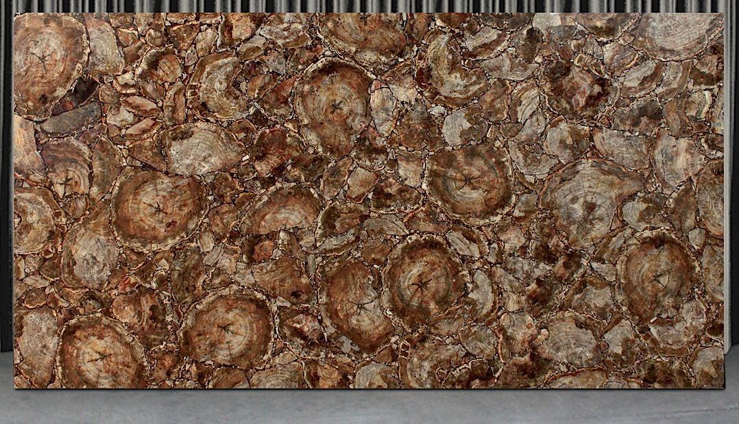 Brown Petrified Wood European Granite Marble Group Marble Granite Petrified Wood Granite