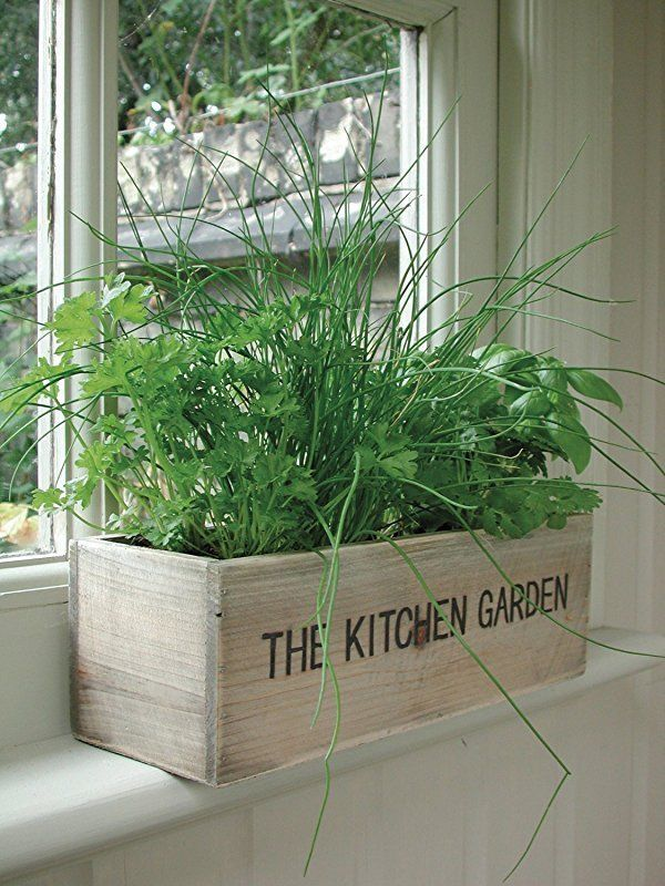 Kitchen Window Herb Garden, Indoor Wooden Box Planter