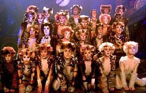 Love Changes Everything Lyrics Cats Musical Jellicle Cats Musicals