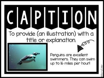 Captions - Arctic Animals Captions and 8 Non-Fiction Text Feature Posters #animalcaptions