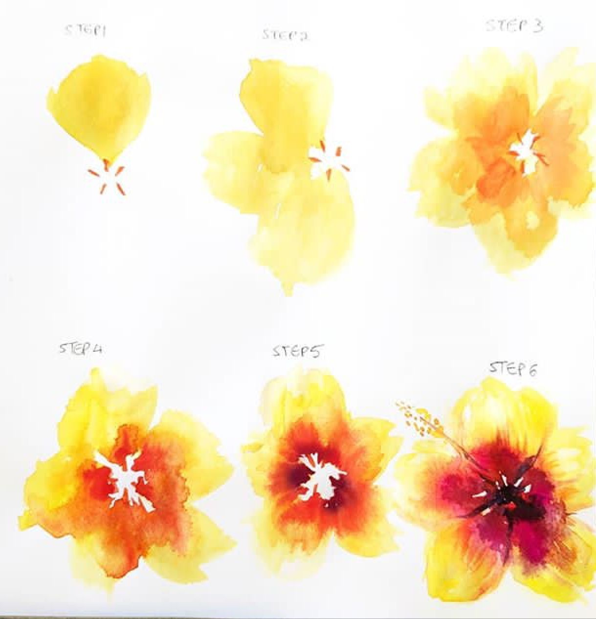 Watercolor Flower Watercolor Flowers Tutorial Watercolor Art