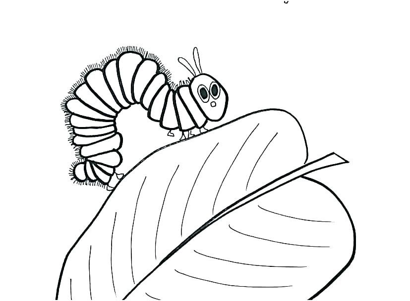 Very Hungry Caterpillar Coloring Page Beautiful Stock Hungry Caterpillar Coloring Page The Very Hungry Fruit Coloring Pages Bunny Coloring Pages Coloring Pages