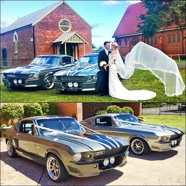 Sydney Eleanor Hire Wedding Car Shelby GT500 Cars Is Exhibiting