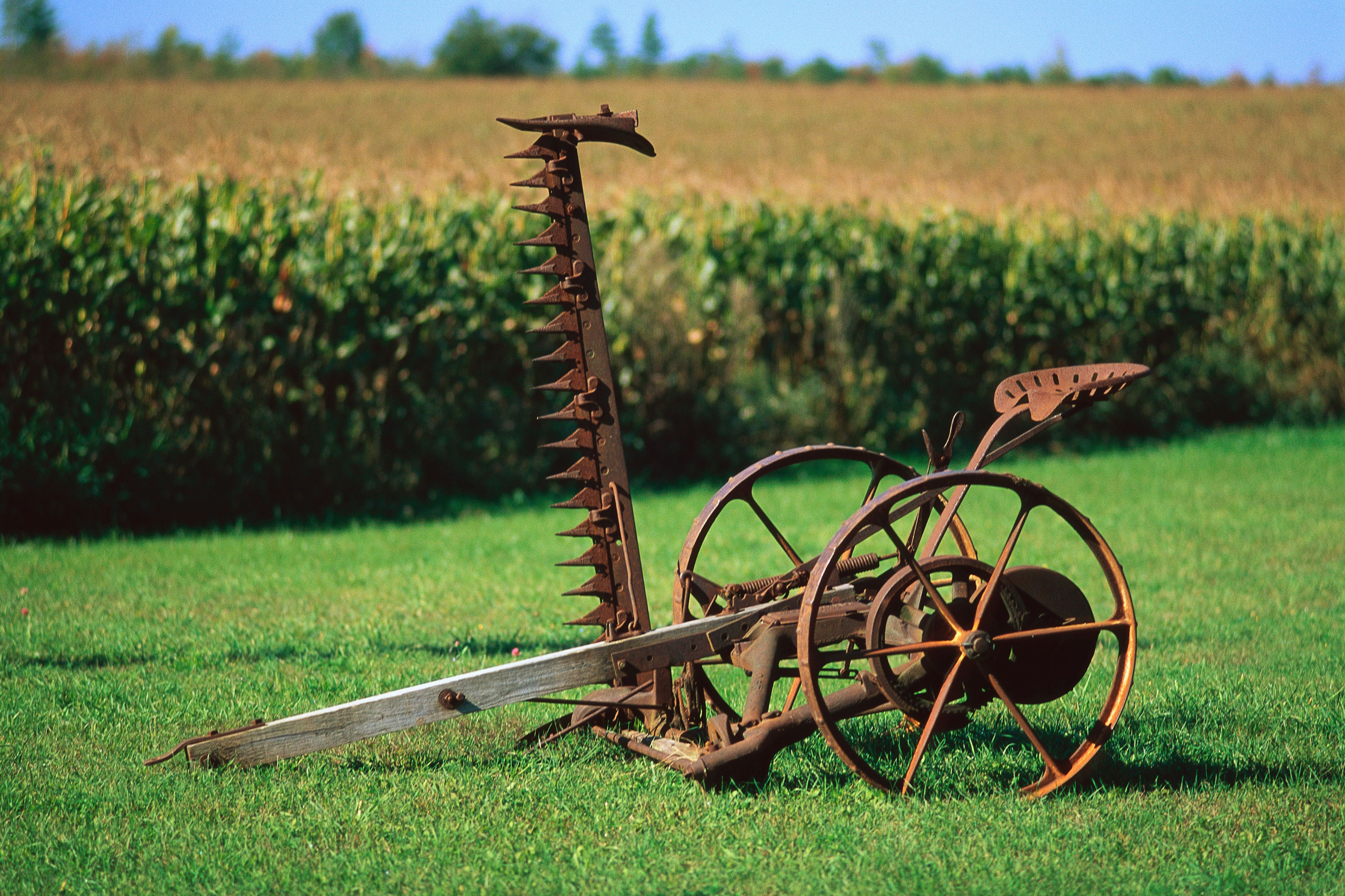Image Result For Hay Mower Image