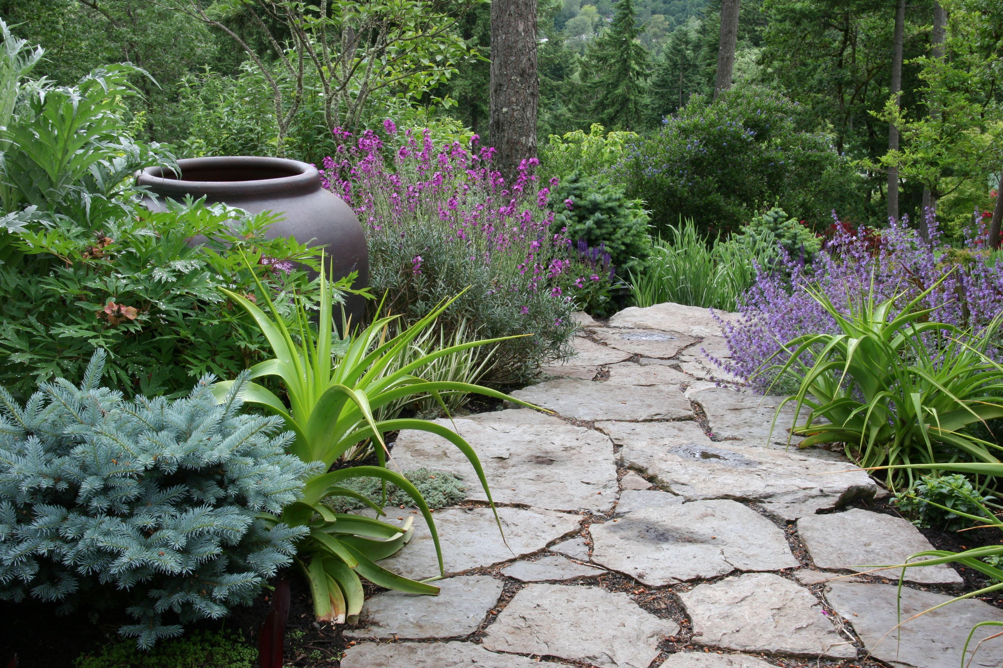 Suncatcher  Portfolio Mosaic Gardens Landscape  Garden Design And