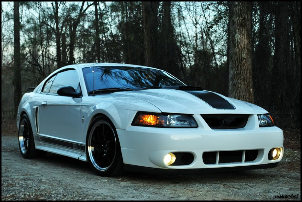 2004 Ford Mustang Mach 1 For Sale