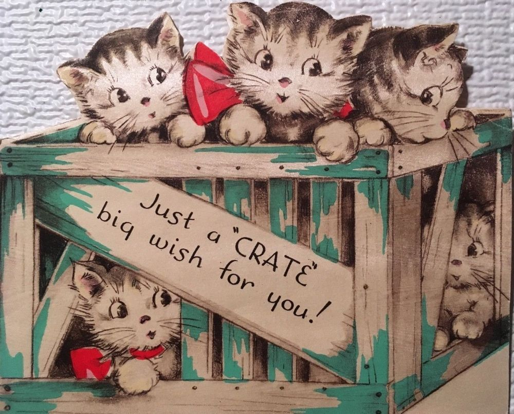 Vintage Mid Century Used Christmas Card Crate Full Of Kittens Die