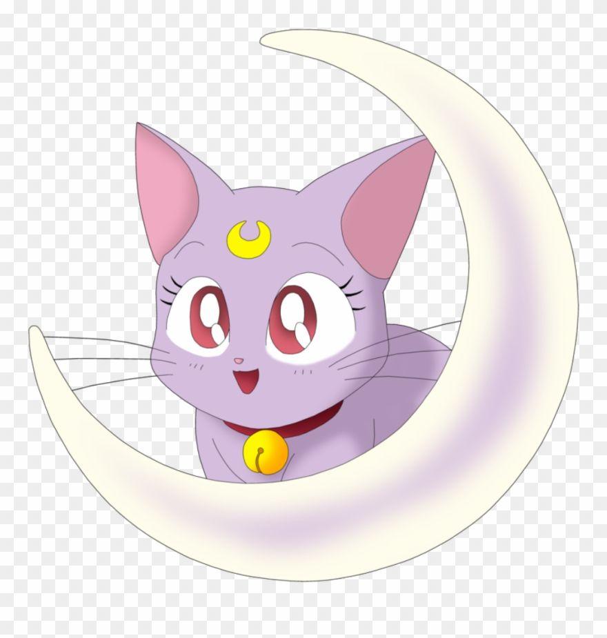 Sailor Moon Sailor Venus Sailor Mercury Chibiusa Sailor Mars Sailor Moon Png Hd Sailor Venus Sailor Mercury Sailor Mars
