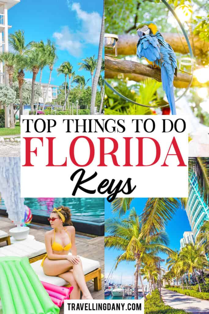 All The Secret Spots You Should See On The Way To Key West Florida In 2021 Florida Travel Travel Usa Florida