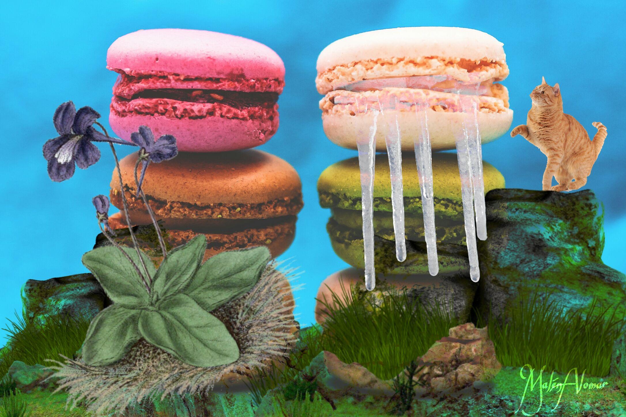 ¡Mira esta creación que he creado con #PicsArt! Crea el tuyo gratis  http://go.picsart.com/f1Fc/Sjmlf0DDhw
