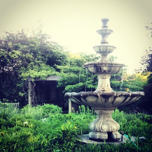 Beautiful perennial garden @ McCrory Gardens in Brookings SD ...