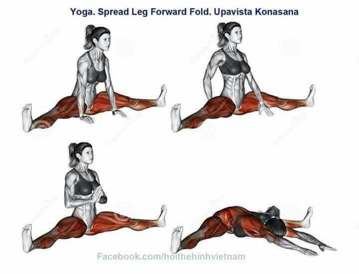 What muscles are targeted in the yoga spread leg forward fold ...