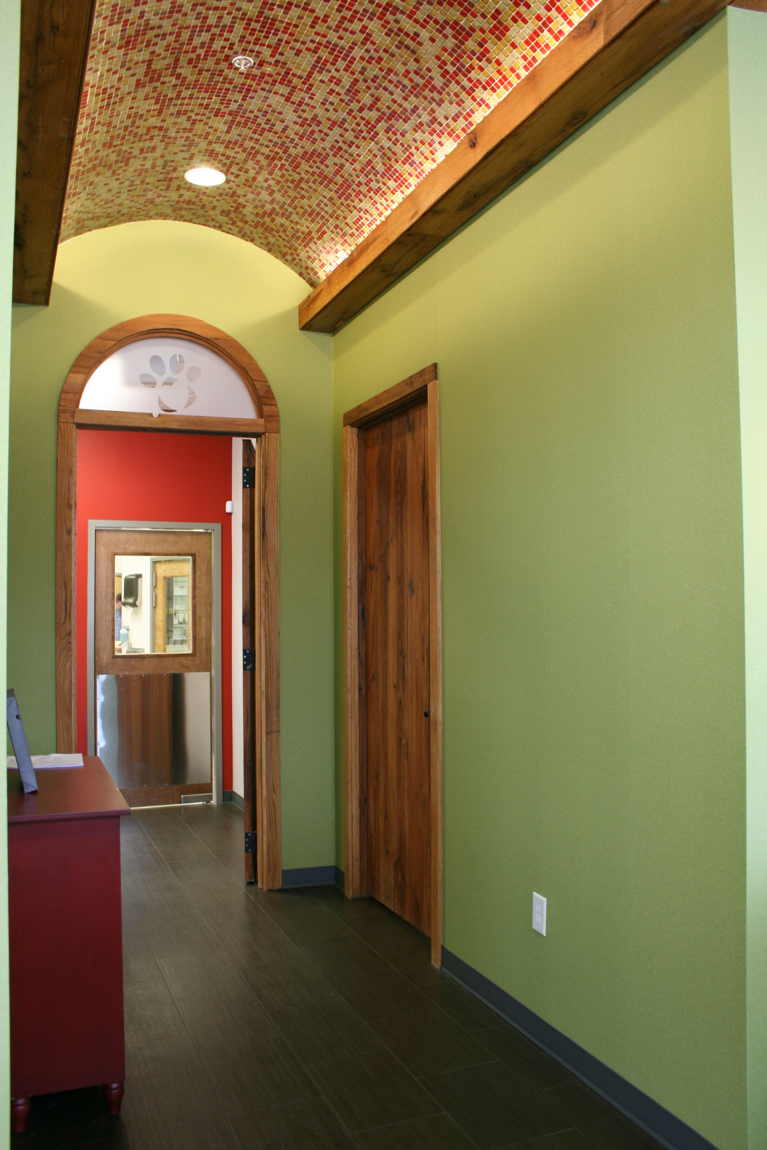 Veterinary Hall With Mosaic Tile Barrel Vault Ceiling And
