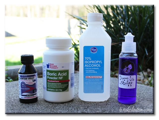 How To Combat Ear Infections In Dogs Dog Ear Wash Dogs Ears Infection Dog Ear Infection Remedy
