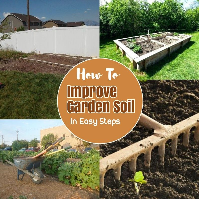 96720bf031eacacd99fd84e5469fb8a6 - How To Prepare Soil For Next Year Gardening