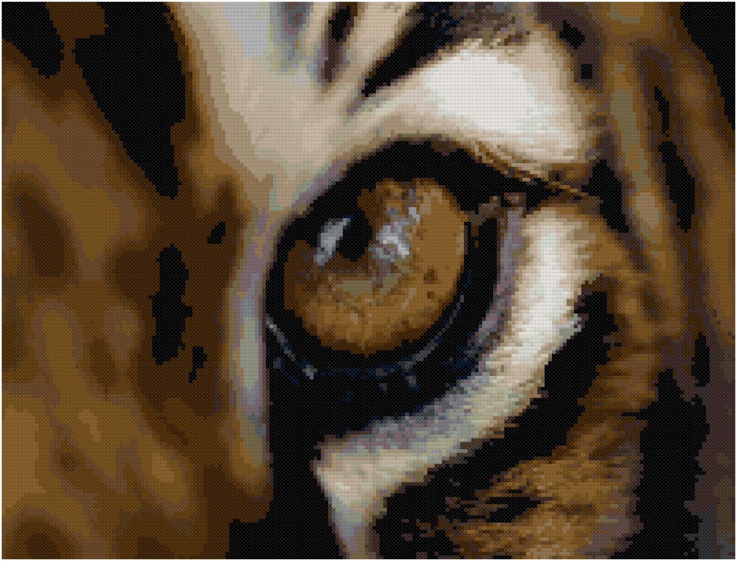 COUNTED CROSS STITCH CHART TIGER EYES