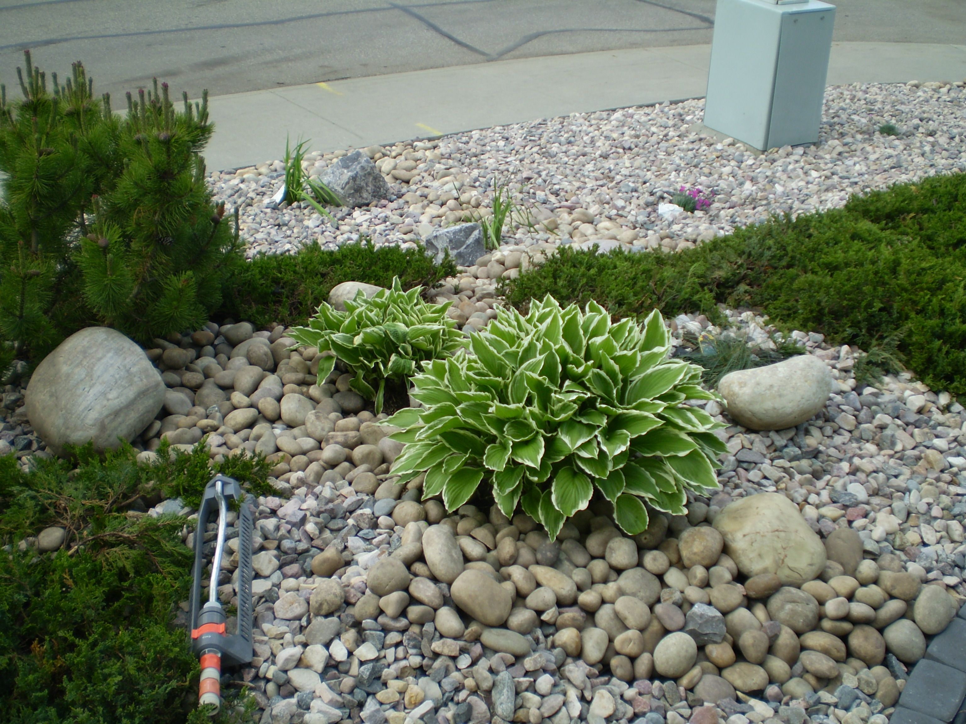 low maintenance landscaping ideas front yard | Home Design ...