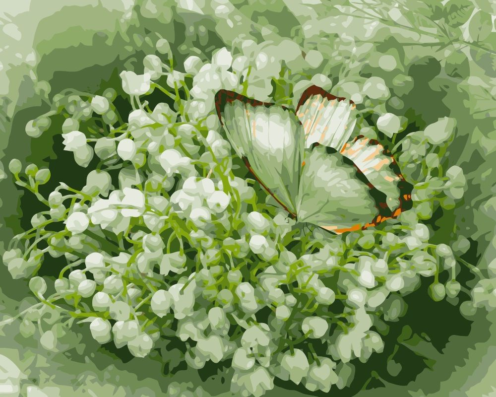 Related image Lily of the valley flowers, Beautiful