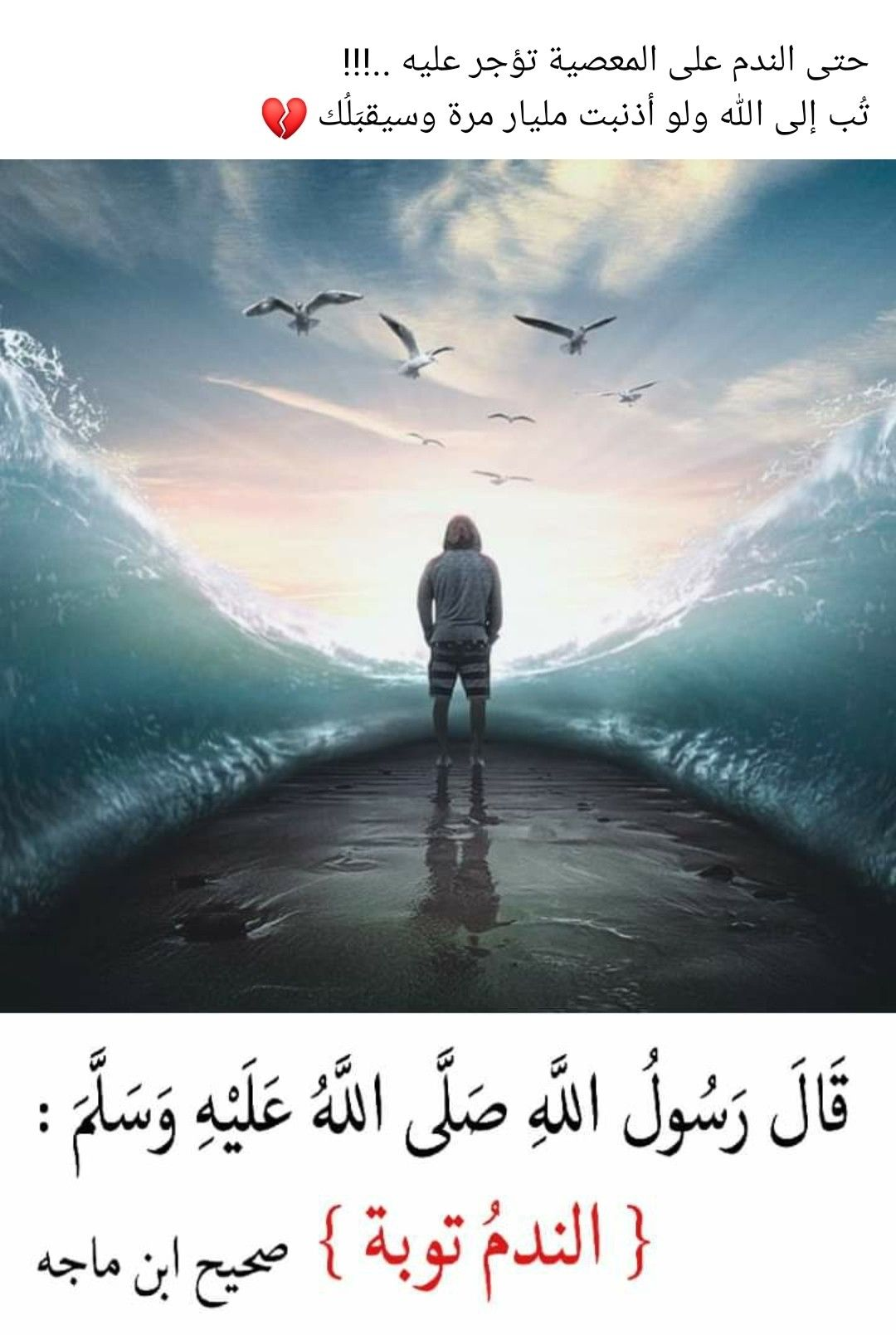 Pin By The Noble Quran On I Love Allah Quran Islam The Prophet Miracles Hadith Heaven Prophets Faith Prayer Dua حكم وعبر احاديث الله اسلام قرآن دعاء In 2021 Movie Posters Movies