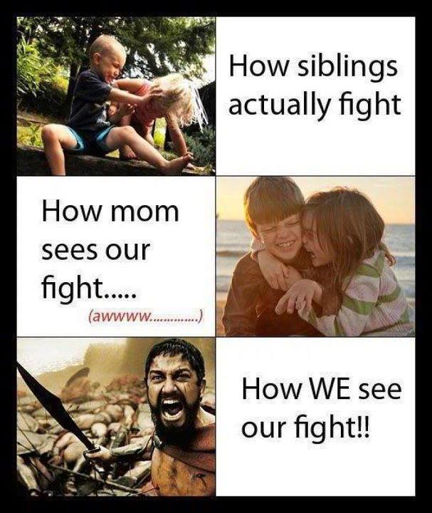 Sibling War