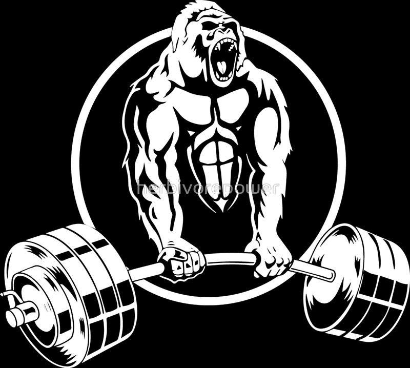 Gorilla Gym Bodybuilding By Herbivorepower
