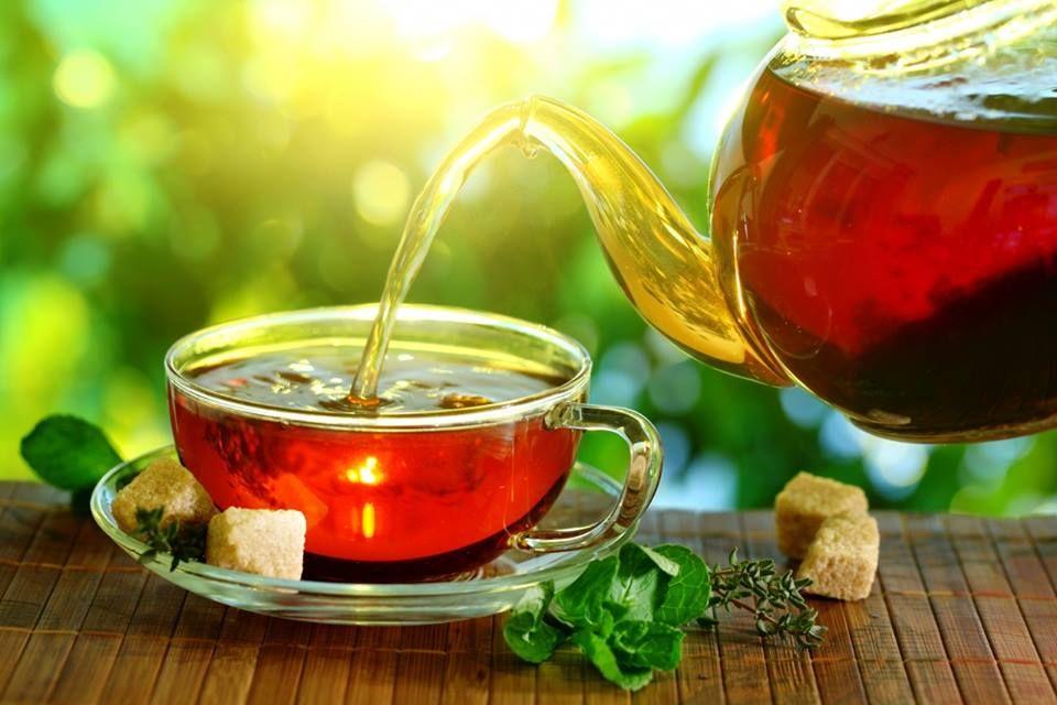 tea fogyás dr oz