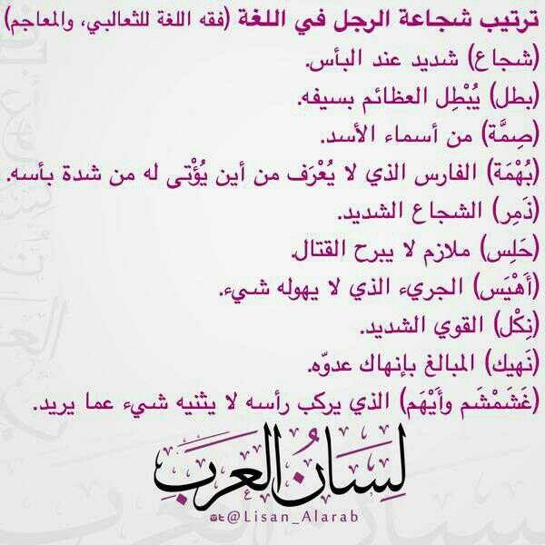 ترتيب شجاعة الرجل في اللغة العربية الشجاعة Words Beautiful Arabic Words Cool Words