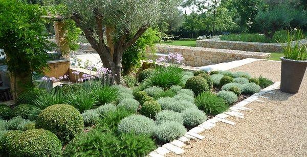 Jardin Sec Santolines Buis Jardin Sec Jardin Mediterraneen Amenagement Jardin