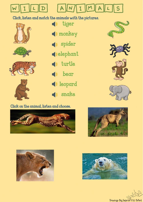 Wild Animals Interactive Worksheet Animals Wild English As A Second Language Esl Wild Animals Photography [ 1413 x 1000 Pixel ]