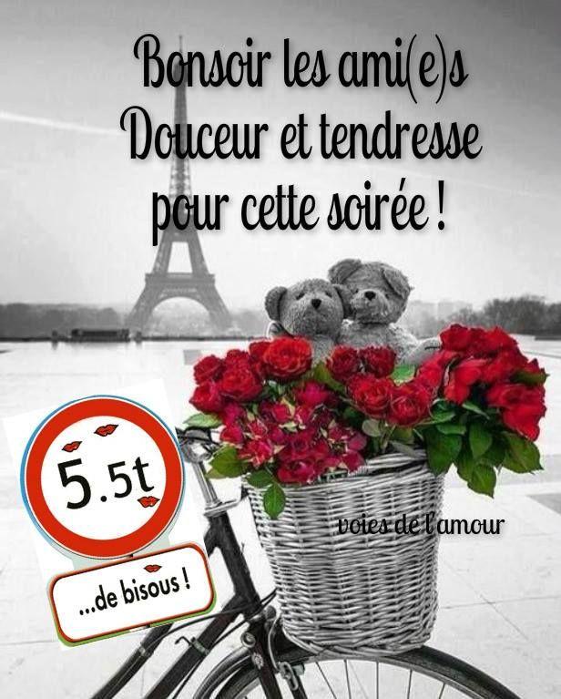 Favori Bonsoir les ami(e)s. Douceur et tendresse pour cette soirée  FR65