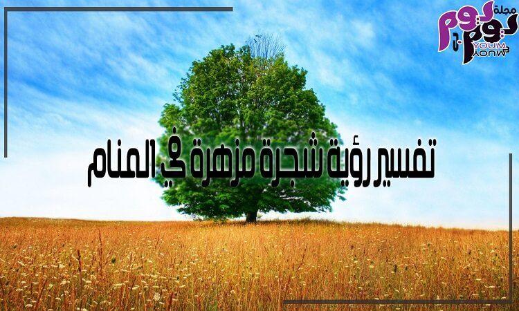 تفسير رؤية شجرة مزهرة في المنام Flowering Trees Tree Flowers