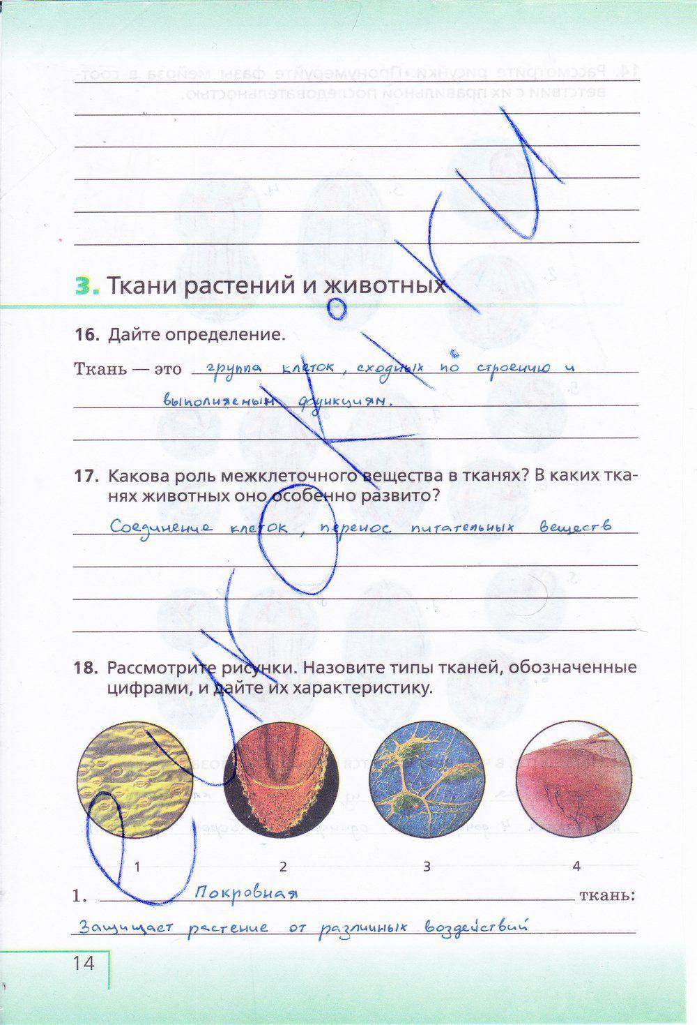 Скачать бесплатно без регистрации тренажор математика 1s 1-5класс народ ру