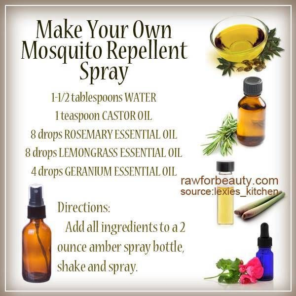 A Recipe For A Homemade Chemical Free Mosquito Repellent