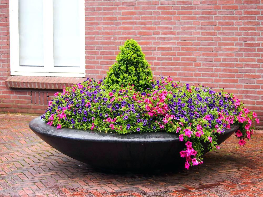 Garden Bowl Planter Bowl Planter Large Garden Bowl Planter